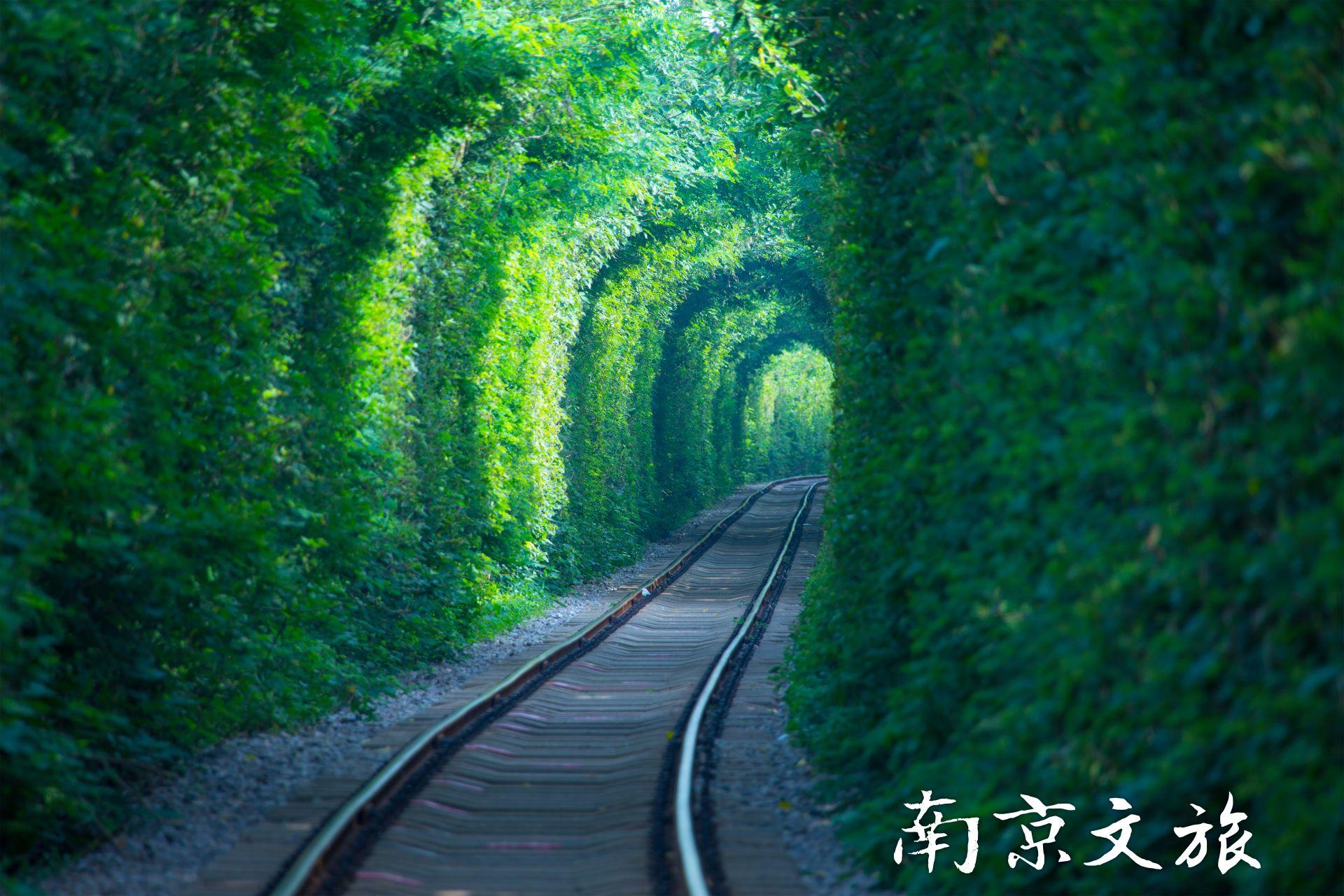 Love Tunnel, Nanjing