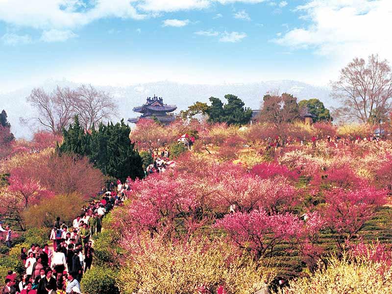 Meihua Mountain of Nanjing