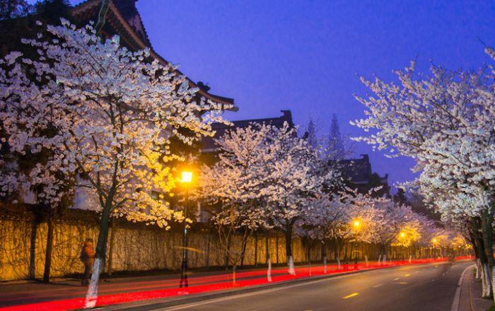 Nanjing International sister cities