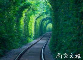 Love Tunnel, Nanjing