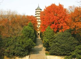 Linggu Park Nanjing Trip Attraction