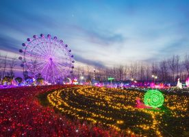 Wonderland of Thousand Lights Nanjing Trip News